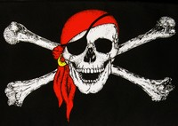 logo du pirate